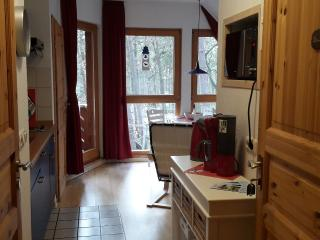 Bright 2 bedroom Zinnowitz Apartment with Internet Access - Zinnowitz vacation rentals