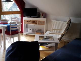 Nice Condo with Internet Access and Blender - Zinnowitz vacation rentals