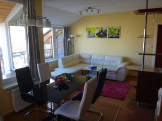 Merry&Car + Huge Balcony New !!! - Budapest vacation rentals