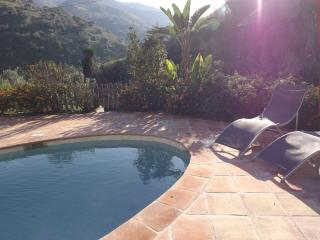 Nice Finca with Internet Access and A/C - Cutar vacation rentals