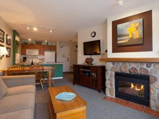 Lovely 1 Bedroom,1 Bath condo at Eagle Lodge- Mountain View unit 322 - Whistler vacation rentals