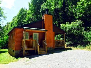 Wonderful 1 bedroom Cabin in Townsend - Townsend vacation rentals
