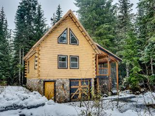 Adorable dog-friendly ski cabin with a private hot tub! - Government Camp vacation rentals