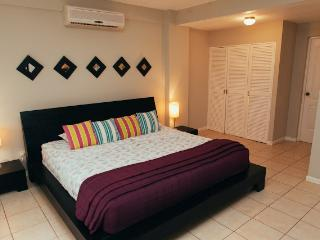Perfect Condo with Internet Access and Dishwasher - Tamarindo vacation rentals
