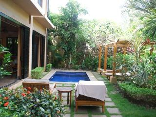 Wonderful Condo with Internet Access and A/C - Tamarindo vacation rentals