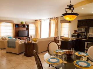 Sunny Condo with Internet Access and Dishwasher - Tamarindo vacation rentals