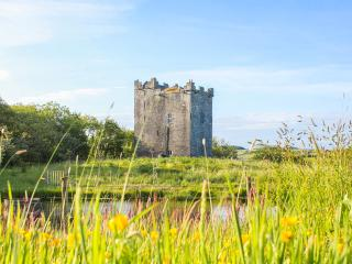 Smiths Castle - Kilshanny vacation rentals