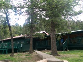 Cozy Studio Condo by the River With EXTRAS! - Ruidoso vacation rentals