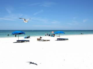 Lovely Condo with Internet Access and Dishwasher - Madeira Beach vacation rentals
