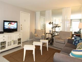 Comfortable Condo with Internet Access and Dishwasher - Saint Pete Beach vacation rentals