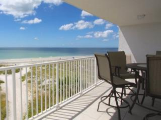 Comfortable Condo with Internet Access and A/C - Madeira Beach vacation rentals