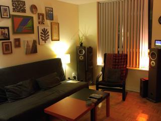 Cozy 2 bedroom APT - artsy Queen West area - Toronto vacation rentals