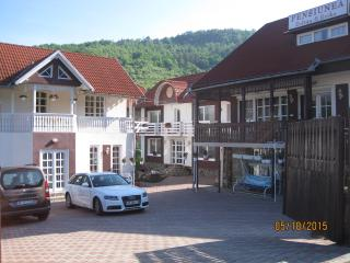 Nice Bed and Breakfast with Internet Access and Satellite Or Cable TV - Praid vacation rentals