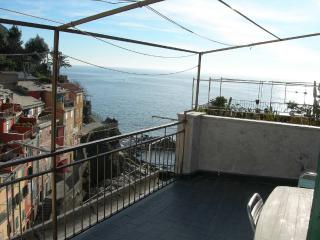 Perfect 2 bedroom Condo in Riomaggiore - Riomaggiore vacation rentals