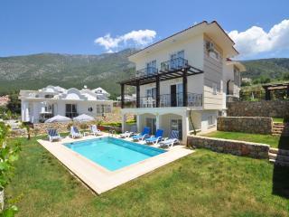Villa Akasya - Oludeniz vacation rentals