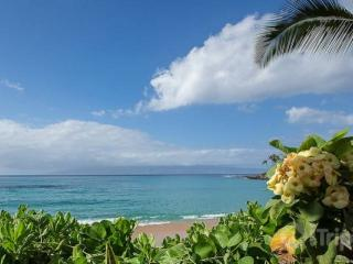 Walk to Napili Bay - Beautiful 2 bedroom / 1 bath apartment! - Napili-Honokowai vacation rentals
