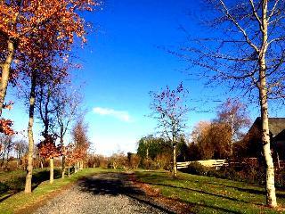 La Maison de la Rivière- Spa- Pleine nature- 10Per - Juaye-Mondaye vacation rentals