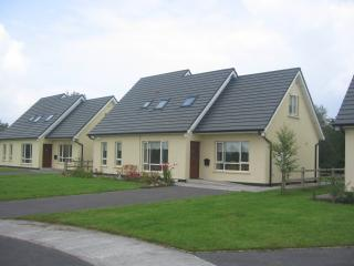 Spacious 4 bedroom Belturbet House with Washing Machine - Belturbet vacation rentals