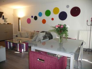 Luxurious, cosy, calm & modern appartement in Gene - Geneva vacation rentals