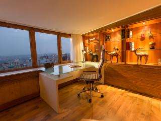 DELUXE  APARTMENT TAKSIM SQUARE - Istanbul vacation rentals