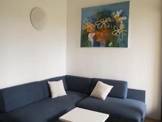 Apartment JANJA - Novigrad vacation rentals