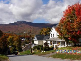 Cozy two bedroom apartment with Mt. Greylock views - Adams vacation rentals