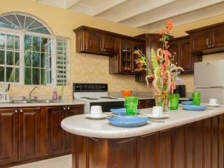 4 bedroom Apartment with Internet Access in Kingston - Kingston vacation rentals