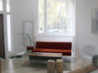 Divine 2 Bedroom Loft in Belgrano - Buenos Aires vacation rentals