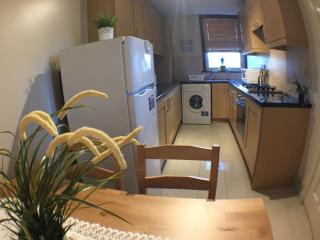 Great Cosy Apartment Close to Wembley Stadium - London vacation rentals