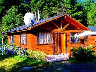 Arriendo Cabañas Pucon Chile, Rukacheche - Pucon vacation rentals