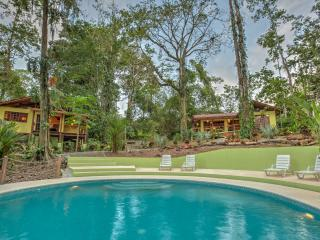 Casa Evelyn with Jungle Pool - Puerto Viejo de Talamanca vacation rentals