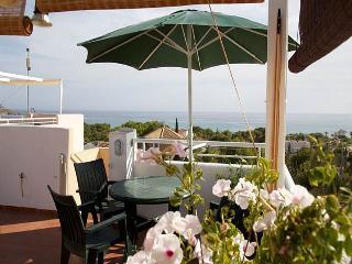 Beautifull Costa Calida Apartment with sea views - La Azohia vacation rentals