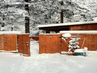 Romantic Modern Eco Cabin Near Heavenly - South Lake Tahoe vacation rentals