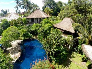 Stunning, luxurious 6 bedroom villa - Canggu vacation rentals