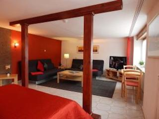LLAG Luxury Vacation Apartment in Koblenz - 581 sqft, direct views to the Rhine - Koblenz vacation rentals