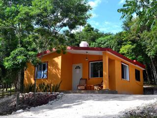 House in the jungle - Xpujil Town vacation rentals