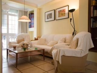 Comfortable House with A/C and Television - Seville vacation rentals