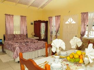 Willie's Court: The Spice Isle - Gouyave vacation rentals