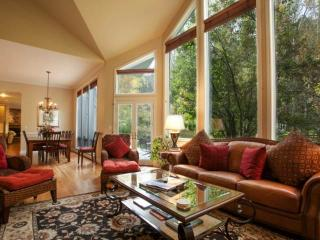 Indoor/Outdoor Living, Prvt Hot Tub, Close to Vail & Beaver Creek, Large Groups & Families Welcome! - Vail vacation rentals