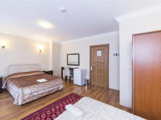 Luminous and Calm Room (Up to 3pax) - Istanbul vacation rentals