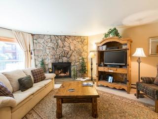 Discount Park Place Condo, Ski-in, In Town - Breckenridge vacation rentals