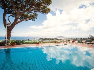 """""""Villa Belvedere""""-a due minuti dal porto di Ischia - Ischia vacation rentals"""