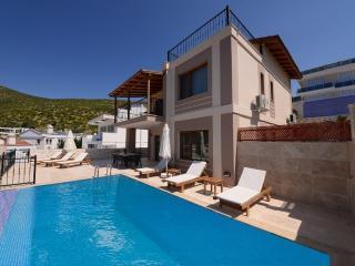 Holiday villa in Kalamar Kalkan, sleeps 08.: 214 - Kalkan vacation rentals