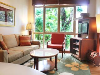 1 Bedroom Superior Apartment - Singapore vacation rentals