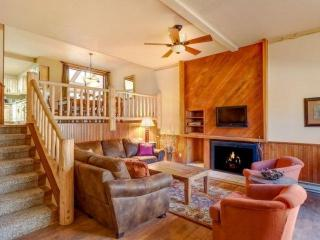 Cedars:Next to Pk 9 Base+Quicksilver Run! Large Hot Tub in Unit - Breckenridge vacation rentals