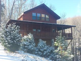 Bring your dog Few miles from town/National Park - Gatlinburg vacation rentals