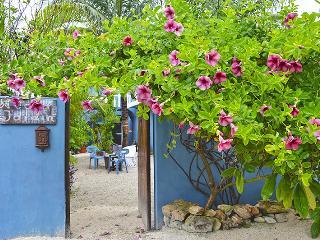 CASA JARDIN GARDEN APARTMET PUERTO MORELOS - Puerto Morelos vacation rentals