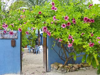 Nice Condo with Internet Access and Wireless Internet - Puerto Morelos vacation rentals