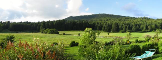 appartamento piano terra con giardino - Roana vacation rentals