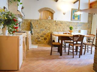 Romantic holiday apartment in the centre - Chianni vacation rentals